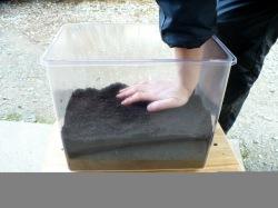 ケースの底に産卵マットを固く敷き詰めます。